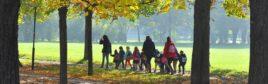 Bild zu Topthema Willfried Gredler-Oxenbauer / picturedesk.com