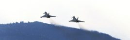 Bild zu Topthema HARALD SCHNEIDER / APA / picturedesk.com